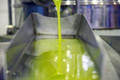 Il migliore olio extravergine di oliva pugliese